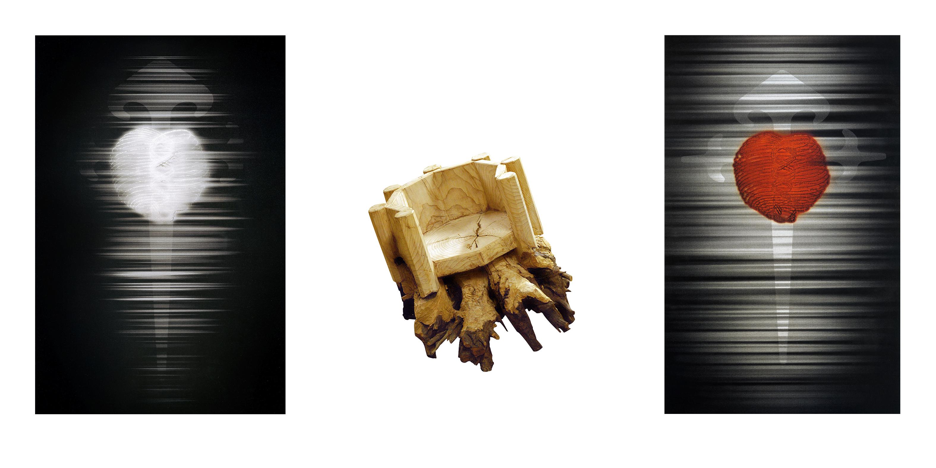 FILIPPO DI SAMBUY 2004-2010 Tecnica mista su tela, scultura in radica di cedro Scultura 80x107x90 Tela 215x140cm Tela 210x127cm